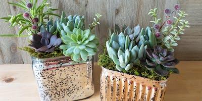 Mercury glass succulent planters