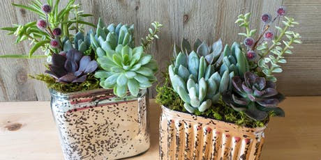 Mercury glass succulent planters tickets