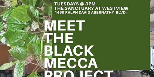 Meet The Black Mecca Project