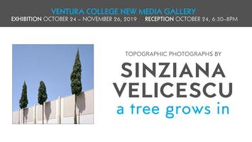 New Media Gallery Reception & Exhibition: A Tree Grows In