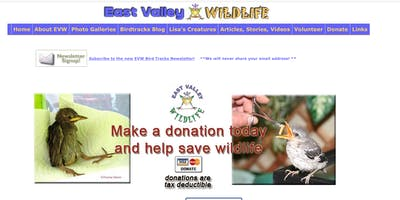 Wildlife bird release, educational talks & garden tour