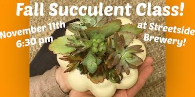 Pumpkin Succulent Class!