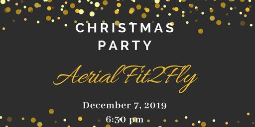 Aerial Fit2Fly Christmas Party