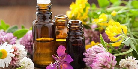 Herb Class ~ Come learn Herbal Oils & take one home with you! Medicine oil! tickets