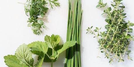Weavers Way Neighborhood Nutrition Team Workshop: Herbs for Everyday Wellness tickets