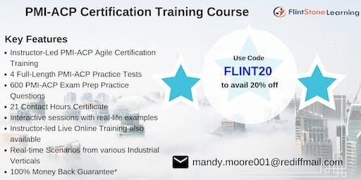 PMI-ACP Bootcamp Training in Alpine, TX