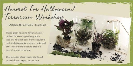Harvest & Halloween Terrarium DIY