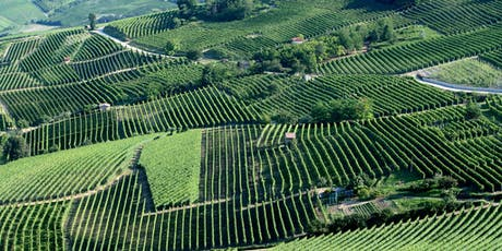 Barolo & Barbaresco: The Great Wines of Piedmont - Wine Tasting tickets