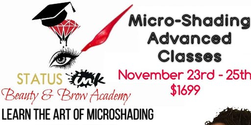 Microshading & Ombre Brows Advanced Class