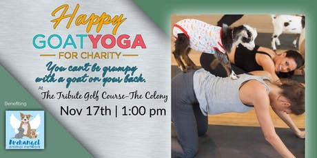 Happy Goat Yoga at Tribute Golf Course: Benefiting Archangel Animal Net tickets