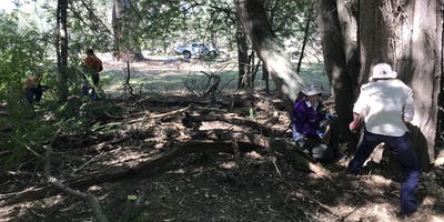 Park Stewardship - Baranduda Conservation Reserve