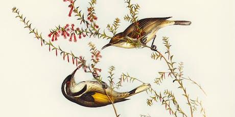 Birds of Tasmania @ Latrobe Library tickets