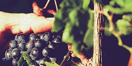 KIN Vineyards Fall Harvest Party - Part 2 - The Final Push! tickets