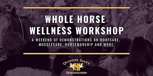 Whole Horse Wellness Workshop QSE 2020
