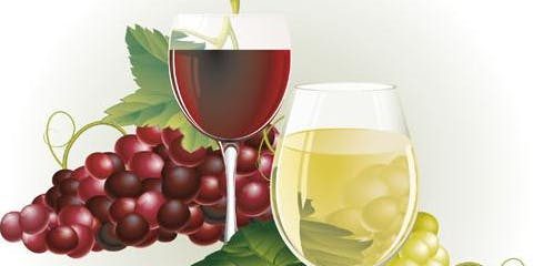 Wine Tasting, Food and Information