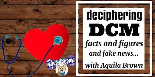 Deciphering DCM, Seminar