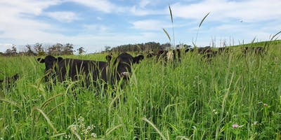 FIELD DAY- Carbon farming in a changing climate.