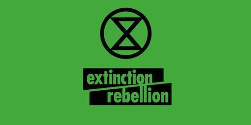 Réunion Accueil des Nouveaux Extinction Rebellion