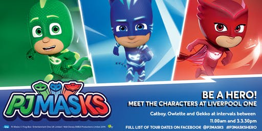 PJ Masks Hero Moves