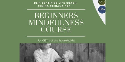 Beginners Mindfulness Course- CEO of the household