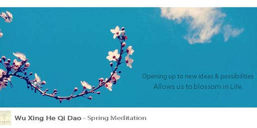 Five Element Meditation Free - Spring Meditation Docklands Melbourne