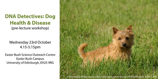 DNA Detectives: Dog Health & Disease (pre-lecture workshop)