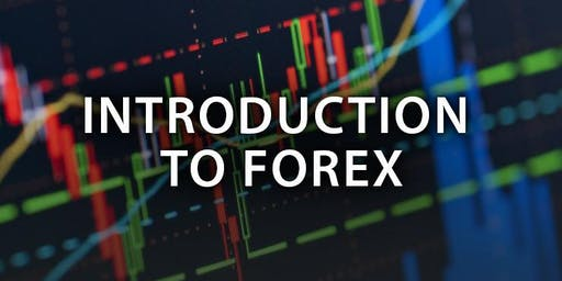 Learn to trade Forex & Crypto. Free workshop!