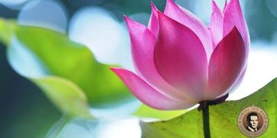 La Gnosi, un Cammino per raggiungere l'armonia interiore.
