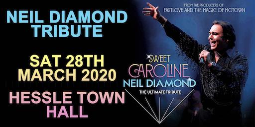 Neil Diamond Tribute @ Hessle Town Hall