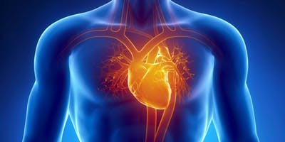 14th Annual WI-ACVP Cardiovascular Symposium