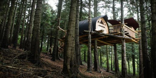Treetop Wellbeing Retreat