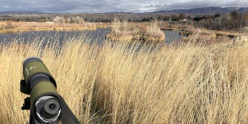Field Trip: Hyatt Hidden Lakes Reserve