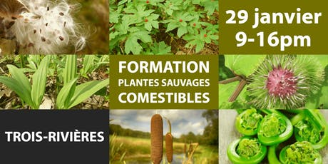 FORMATION: PLANTES SAUVAGES COMESTIBLES billets