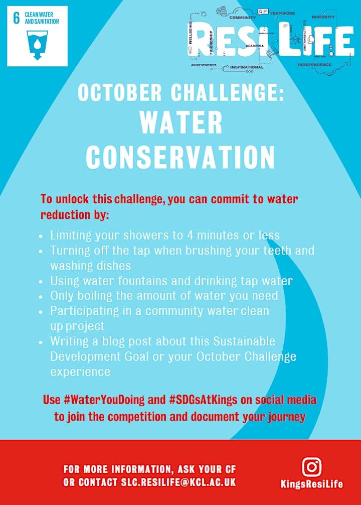 Sustainable Living Community Thames Litter Pick image