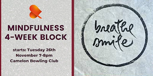 Mindfulness 4-Week Block - Individual Sessions - Camelon