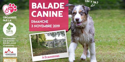Balade Canine à Écaussinnes