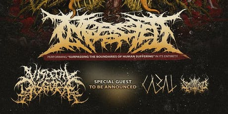 Ingested Anniversary Tour tickets