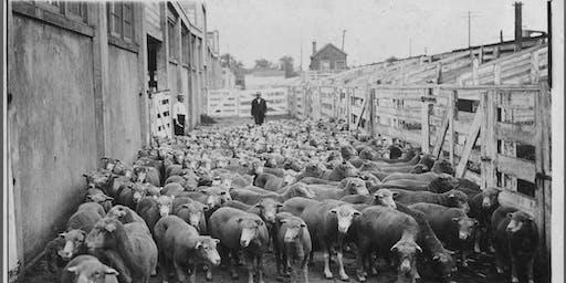 Stockyards History Walk