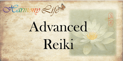 Advanced Reiki Master Class (Lando Medical Reiki 201.3)