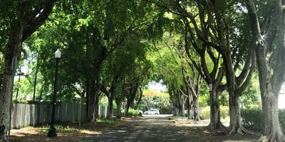 Urban Forestry and Citizen Science