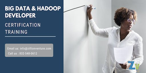 Big Data and Hadoop Developer Online Training in Grande Prairie, AB