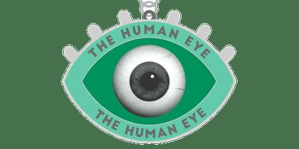 The Human Eyes 1 Mile, 5K, 10K, 13.1, 26.2- Houston