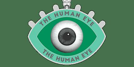 The Human Eyes 1 Mile, 5K, 10K, 13.1, 26.2- Jacksonville