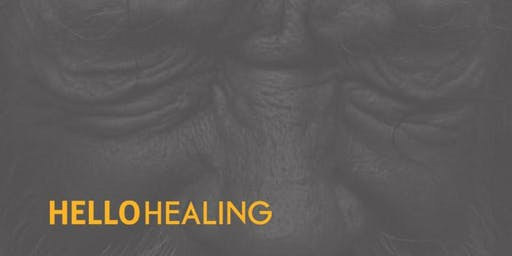 Hello Healing 2020 Vision Boards