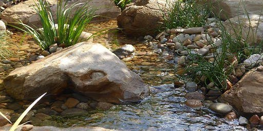 Ponds and waterfalls for home gardens.