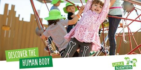 Little Scientists STEM Human Body Workshop, Glenhaven NSW tickets