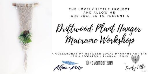 Macrame Workshop - Driftwood Plant Hanger