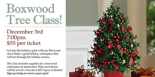 Boxwood Tree Class!