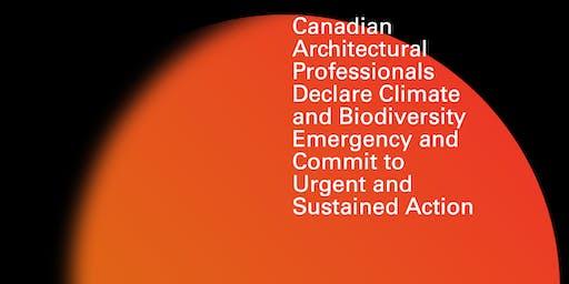Climate Emergency Declaration - Next Steps