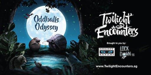 Oddballs Odyssey at Night Safari - 15 & 16 Nov 2019